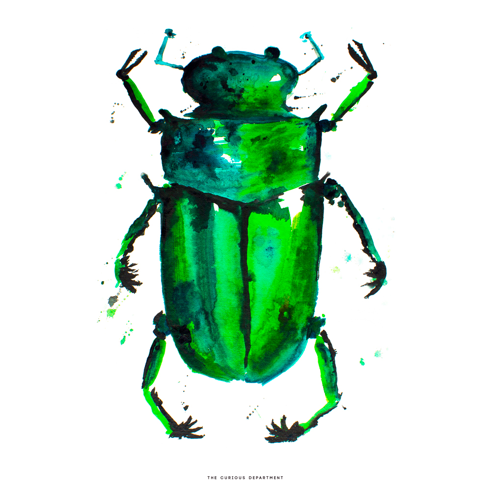 Beetle in the Rain Print