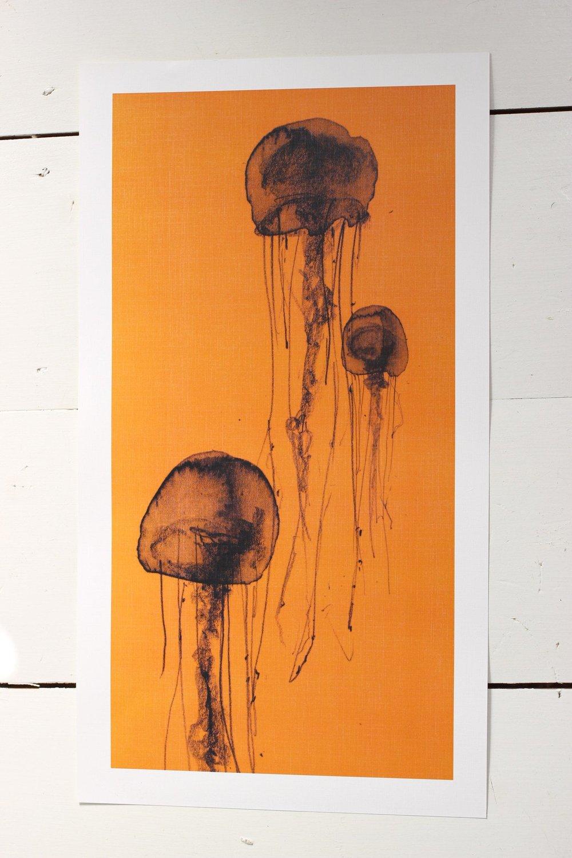 April_and_the_Bear_Orange_Jellyfish_Print_50_2048x2048.jpg