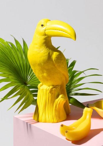 toucan-money-box.jpg