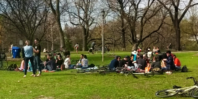 Trinity Bellwoods Park 3.png