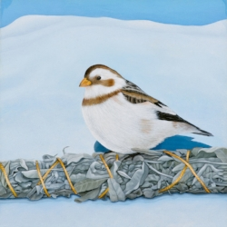 Marsha Kennedy | Snow Bunting with Gift, 2016 oil, silver leaf, birch panel  6 x 6 ""