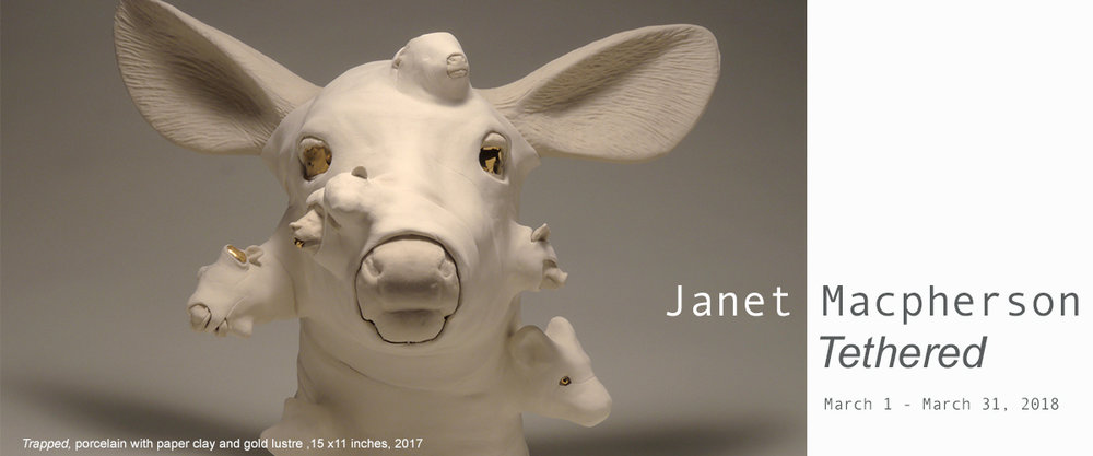 Janet Macpherson .jpg