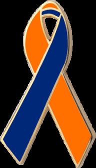 Orange and Blue Awareness Ribbon Pin
