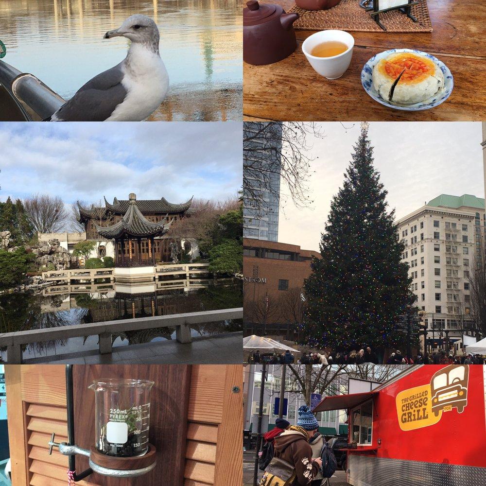 Snapshots of Portland