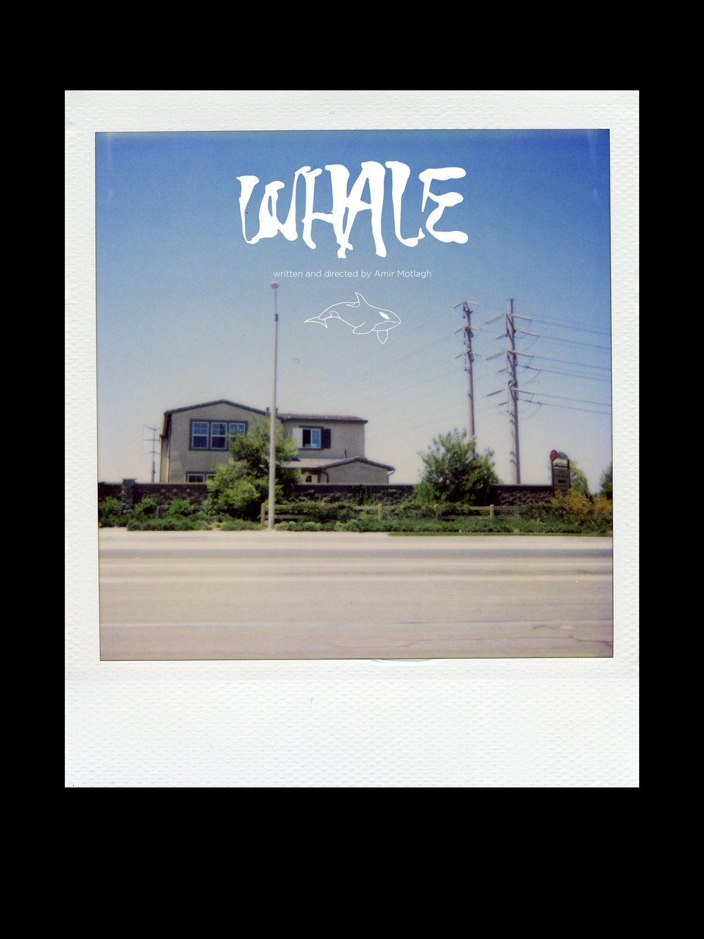 WHALE_2_3_poster_redesign_2018.jpg