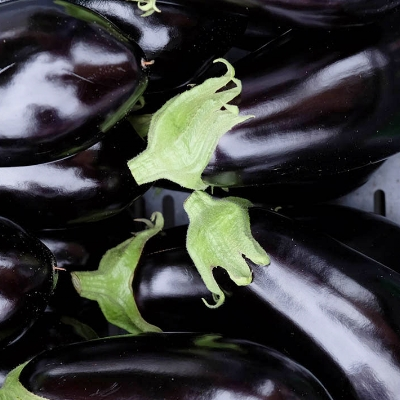 Fancy Eggplant