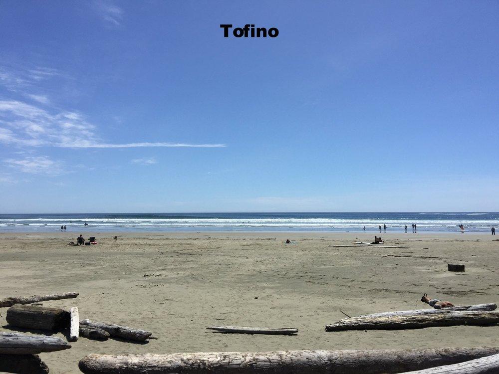 Taffino - Copy.jpg