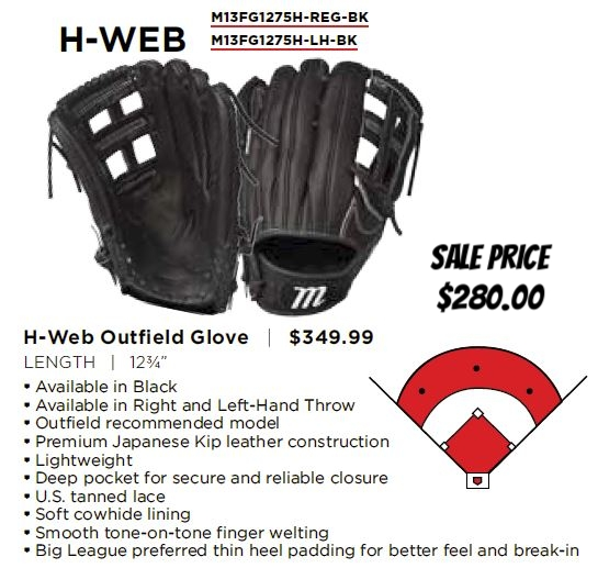 founders h web glove.JPG