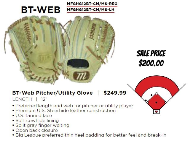 htg bt web glove.JPG