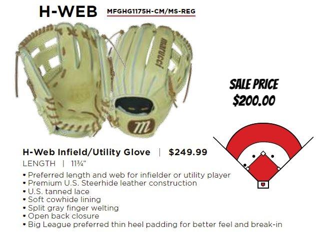 htg h web glove.JPG