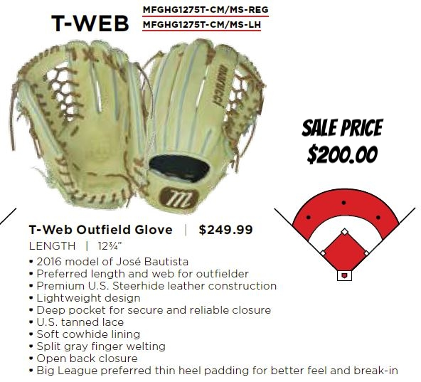 htg t web outfield glove.JPG