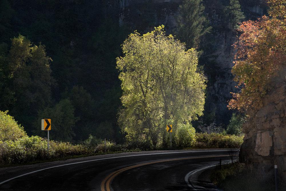 Curve, Logan Canyon, Utah ©Robert Brian Welkie 2016
