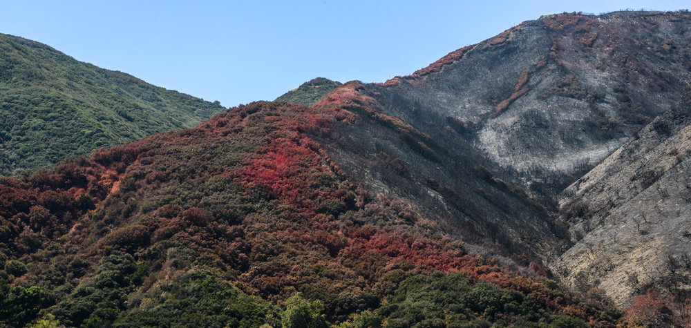 Fire retardant near Cajon Pass, California ©Robert Brian Welkie 2016