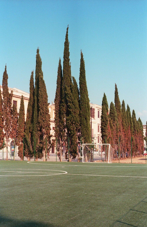 Palermo_72dpi-5.jpg