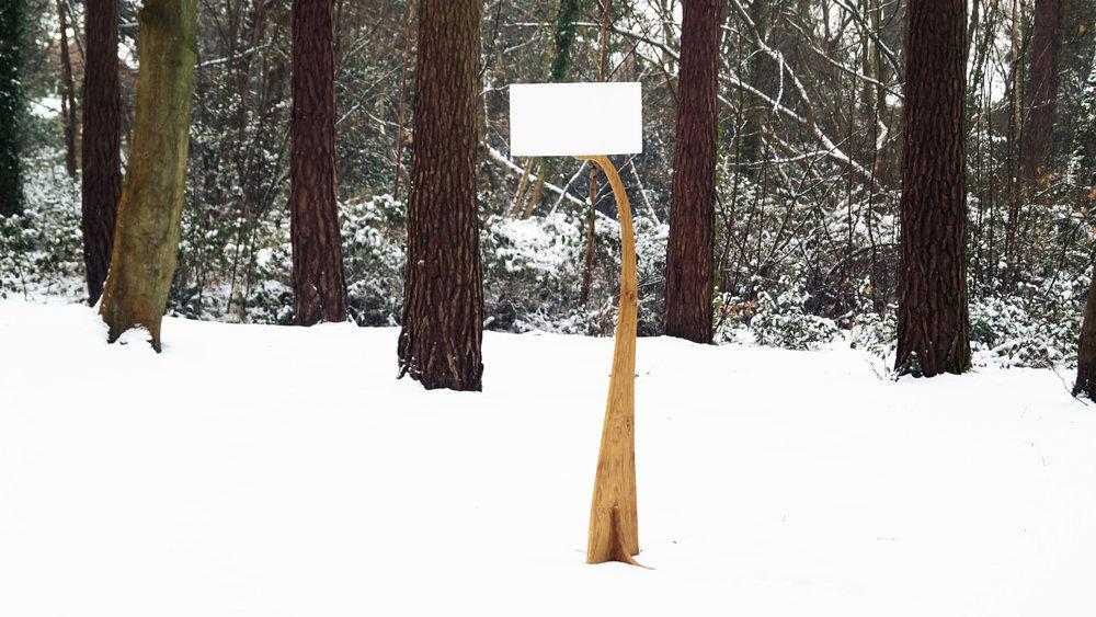 Flow snow w4-.jpg