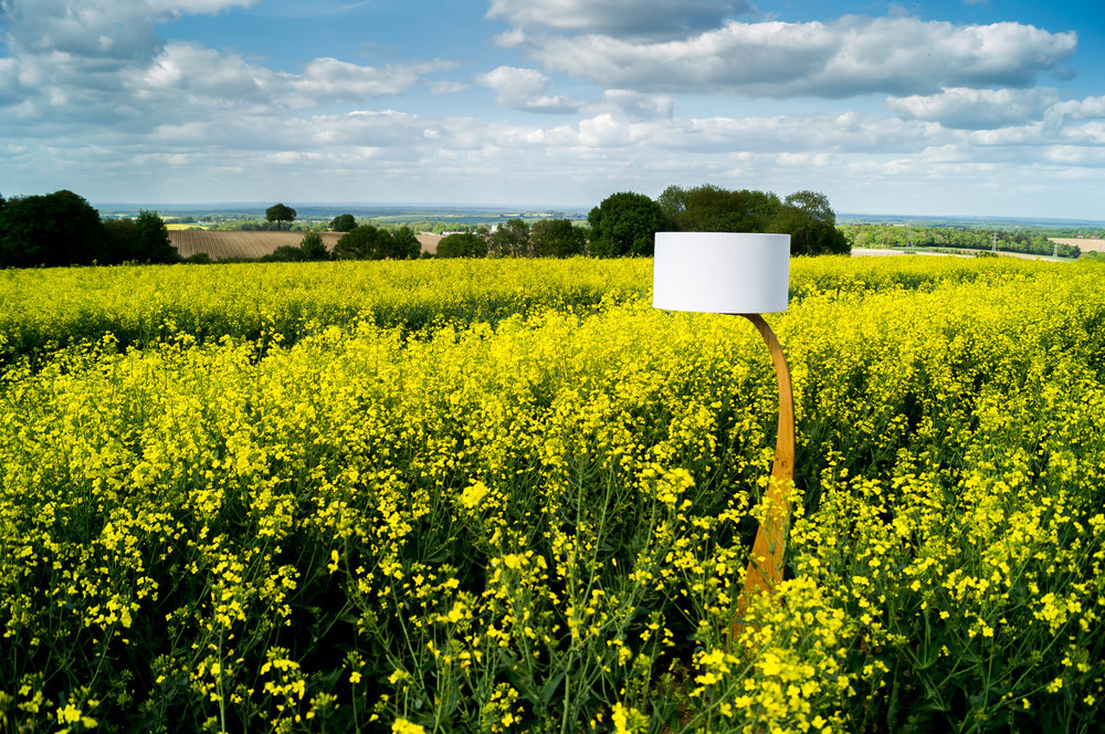 Rapeseed Flow lamp 2 2.jpg