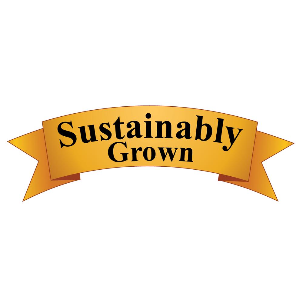 Sarah Christina Sustainably Grown.png