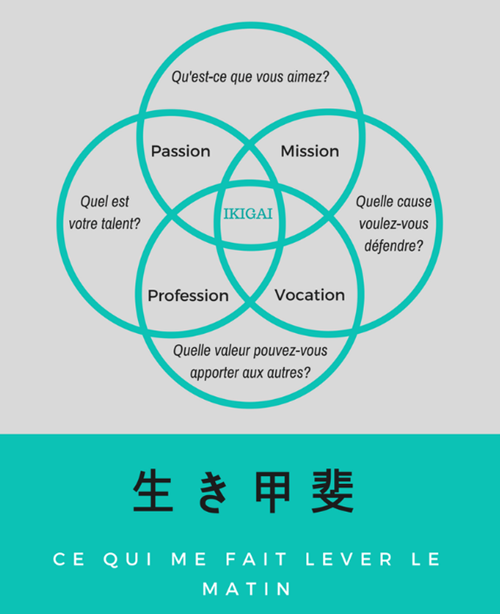 Trouver votre Ikigai - «Ikigai » se traduit par «la raison d'être», «le sel de la vie », «joie de vivre » ou encore «la raison de se réveiller chaque matin». Au Japon, le mot est souvent utilisé pour parler d'une passion intense qui nous aide à trouver du sens dans ce que l'on fait. Bref, avoir un BUT dans la vie.