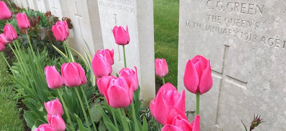 A seasonal blast of colour at Fins New British Cemetery, Sorel-le-Grand, France, this week, captured by Tim Thurlow