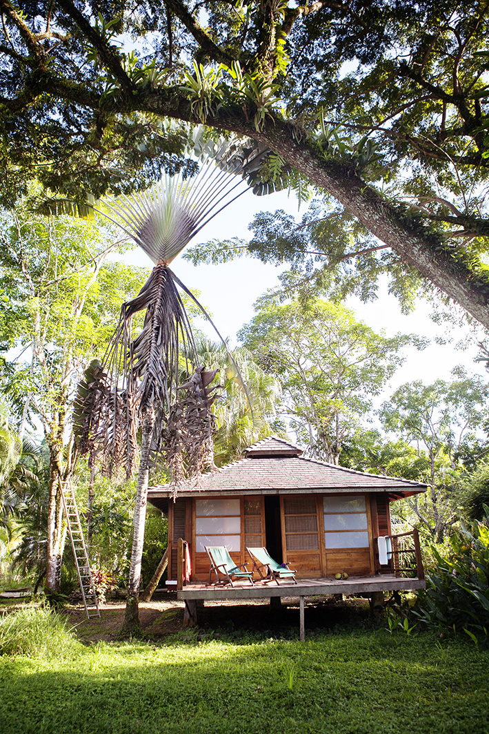 Trinidad 3.jpg