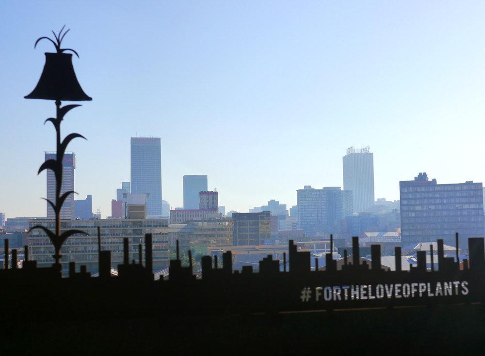 skyline3e.jpg