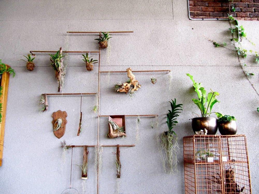 Copper Pipe Plant Display 2 Living Room Design