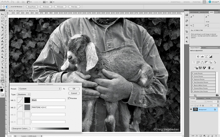 Adjusting Duotone curves in Adobe Photoshop