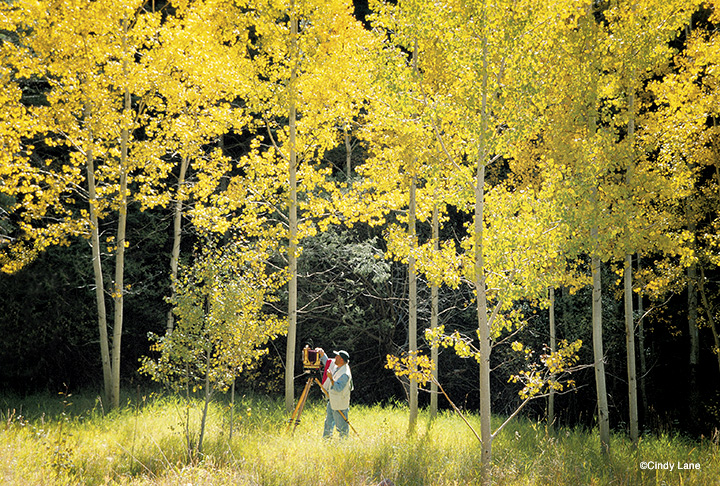 Craig Varjabedian photographing in the Aspens. A Photography by ©Cindy Lane