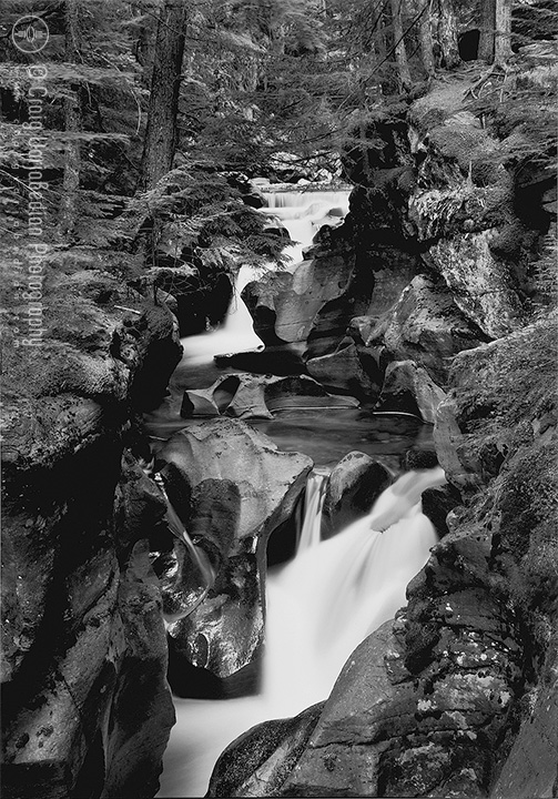 Avalanch-Creek-Waterfall