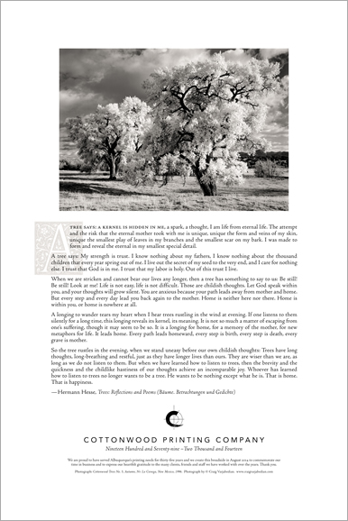 An Elegy for Cottonwood Printing, A Broadside designed by Craig Varjabedian