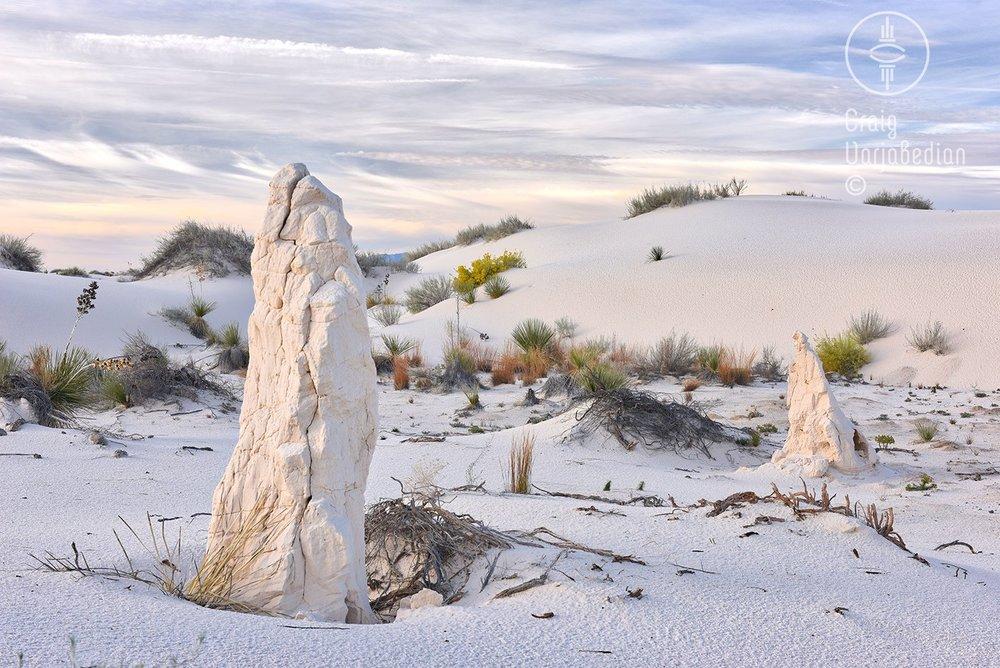 white-sands-0321.jpg