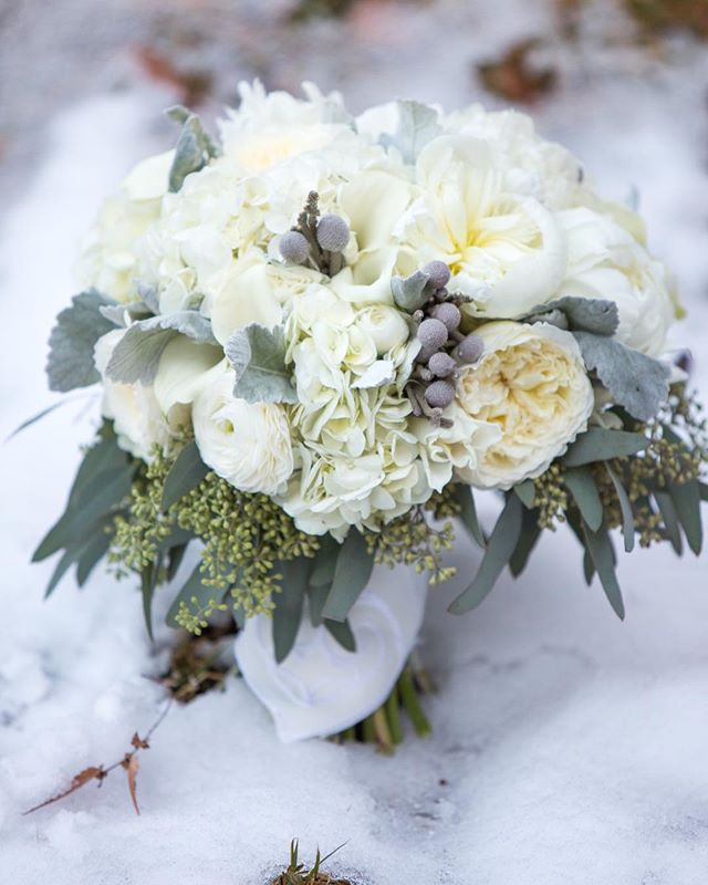 We are still obsessing over the winter blooms from @hothousedesignstudio ❤️ Winter itself?? Ehhhh not so much. #itstoocold . #alishacrossleyphotography #acpassociates #alabamabride #alabamawedding #birminghambride #weddingphotography #thatsdarling #risingtidesociety #pursuepretty #weddingphotographer #weddingphotography #bride #babyitscoldoutside #birminghamweddingphotographer @vkoslin @melizabethevents