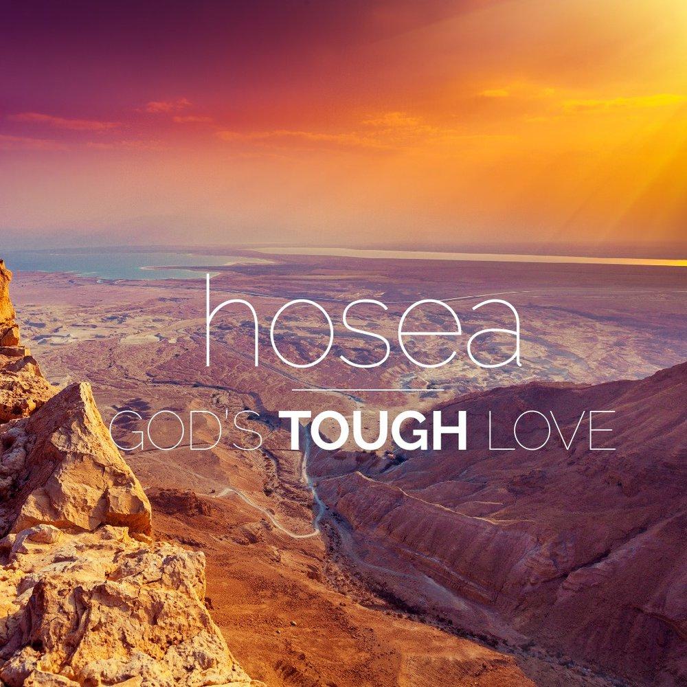 Hosea Series.jpg