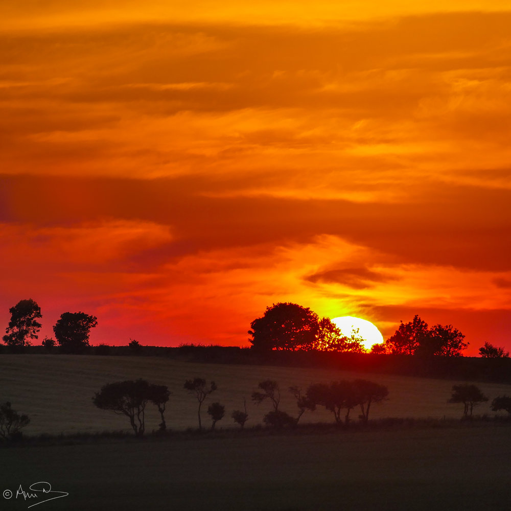 Northumberland sunset.