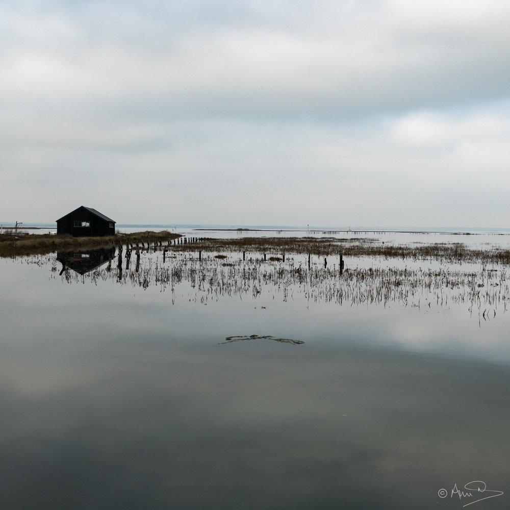 Newtown, high tide