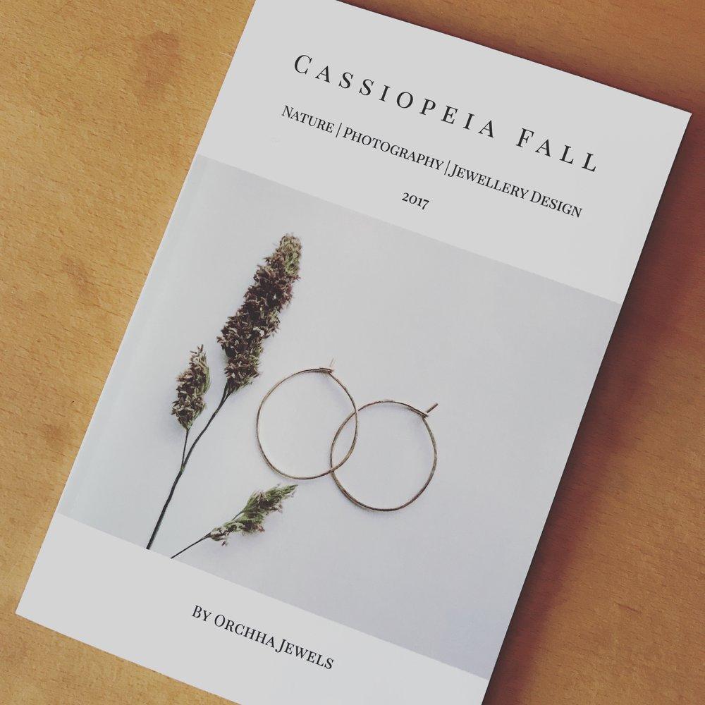 CassiopeiaFall03.jpg