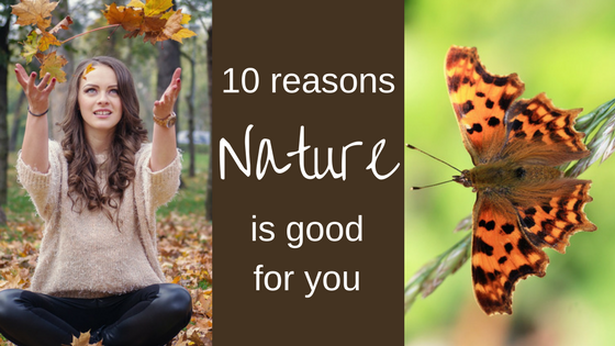 10 reasons nature is good for you Catherine Mason