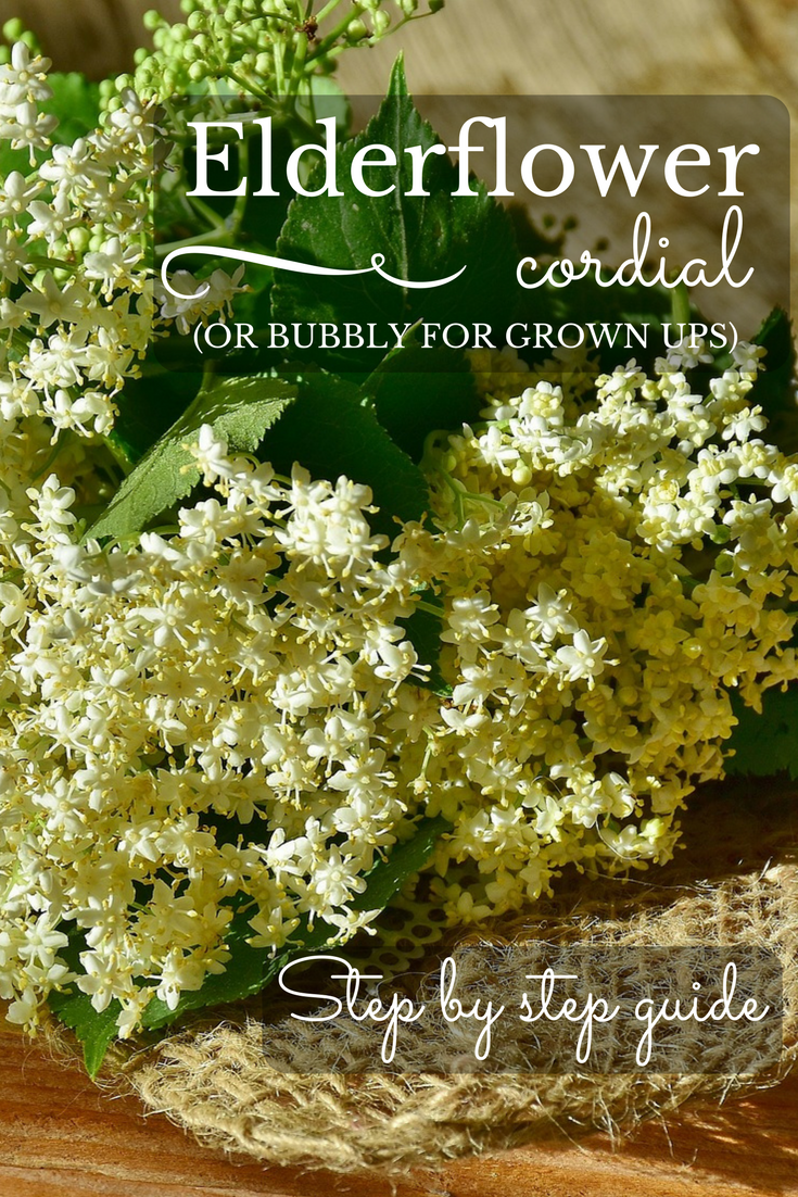 Elderflower cordial champagne recipe Catherine Mason
