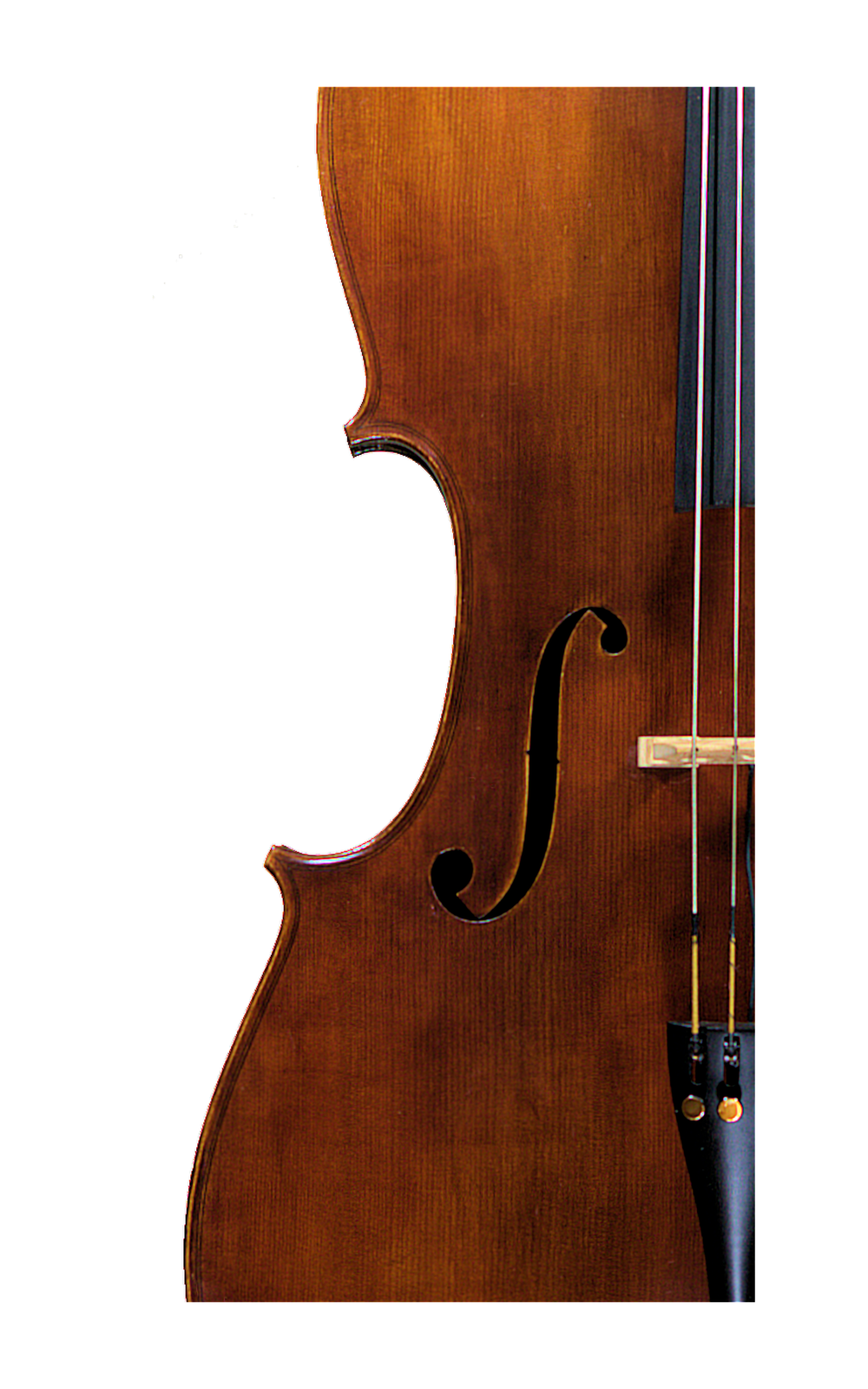Cello_FHole.png