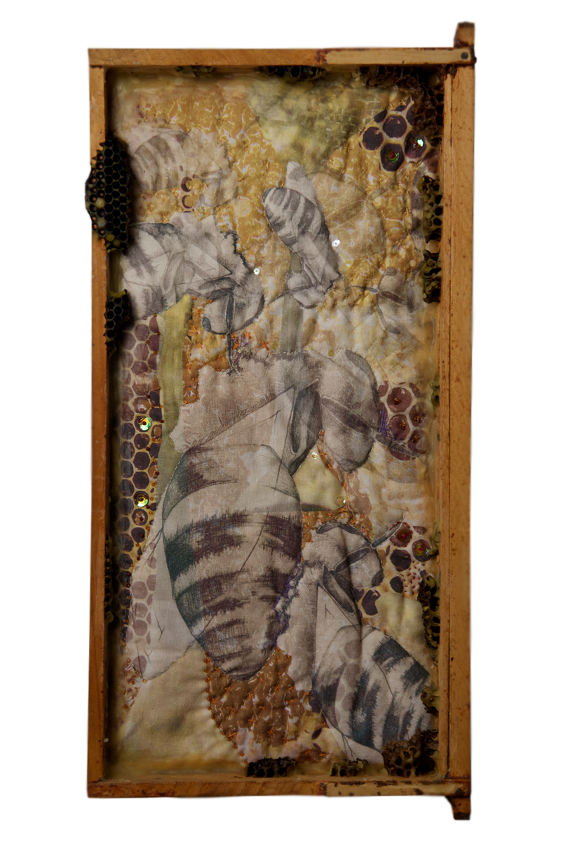Taste This Minute (honey)  Digitally printed linen, hand embroidery and beading, beeswax, used bee frame  2009