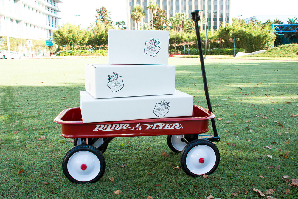 Party In A Box Request Form -