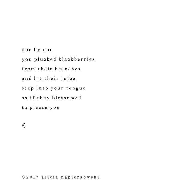 ☽ ☾ ☽ ☾ © 2017 alicia napierkowski . . . #poetry #poetsofinstagram #poetrycommunity #writersofinstagram #womenwhowrite #writers #stardust #2017 #bookstagram #amwriting #instagood #poet #poem #writer #poetsofig #poetscorner #writerscommunity #poeticjustice #love #quote #instagood #instadaily #poet #poets @poets