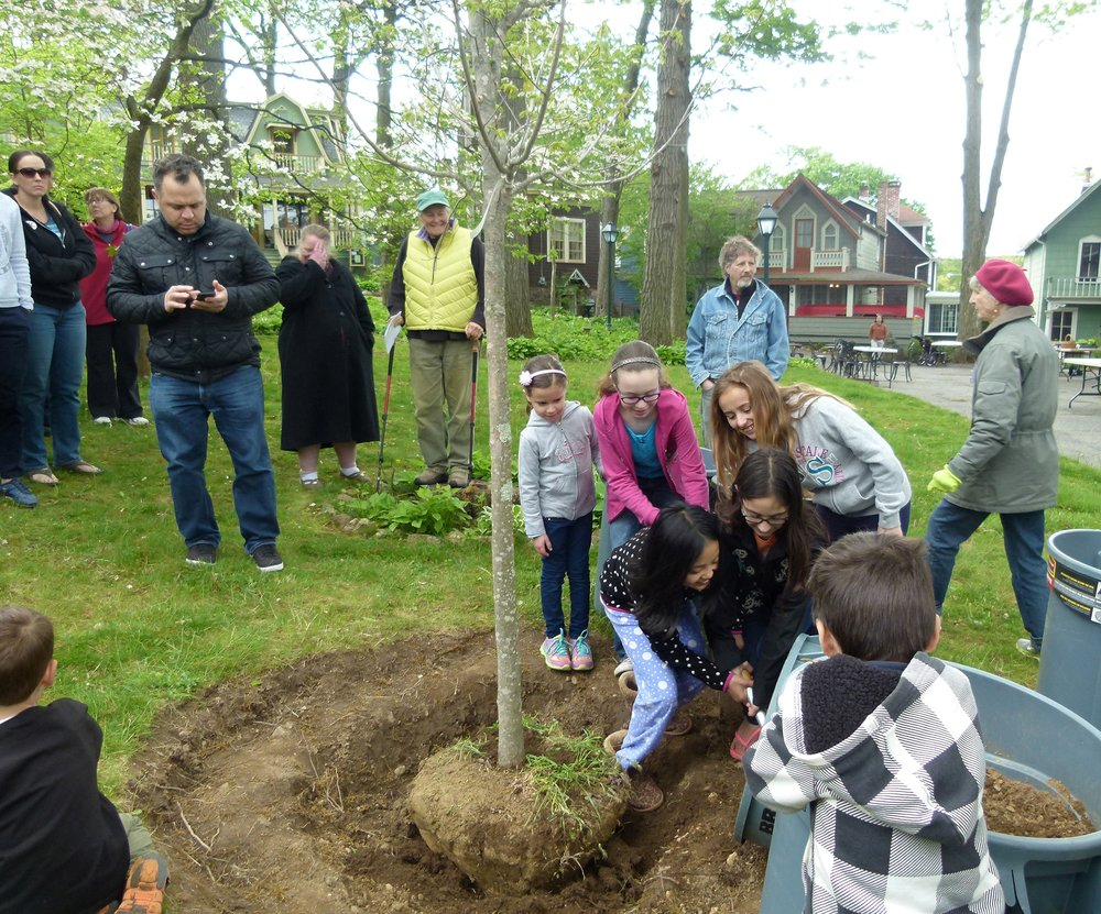 Mount Tabor children helping with the planting in Trinity Park on Treemendous Day 2016