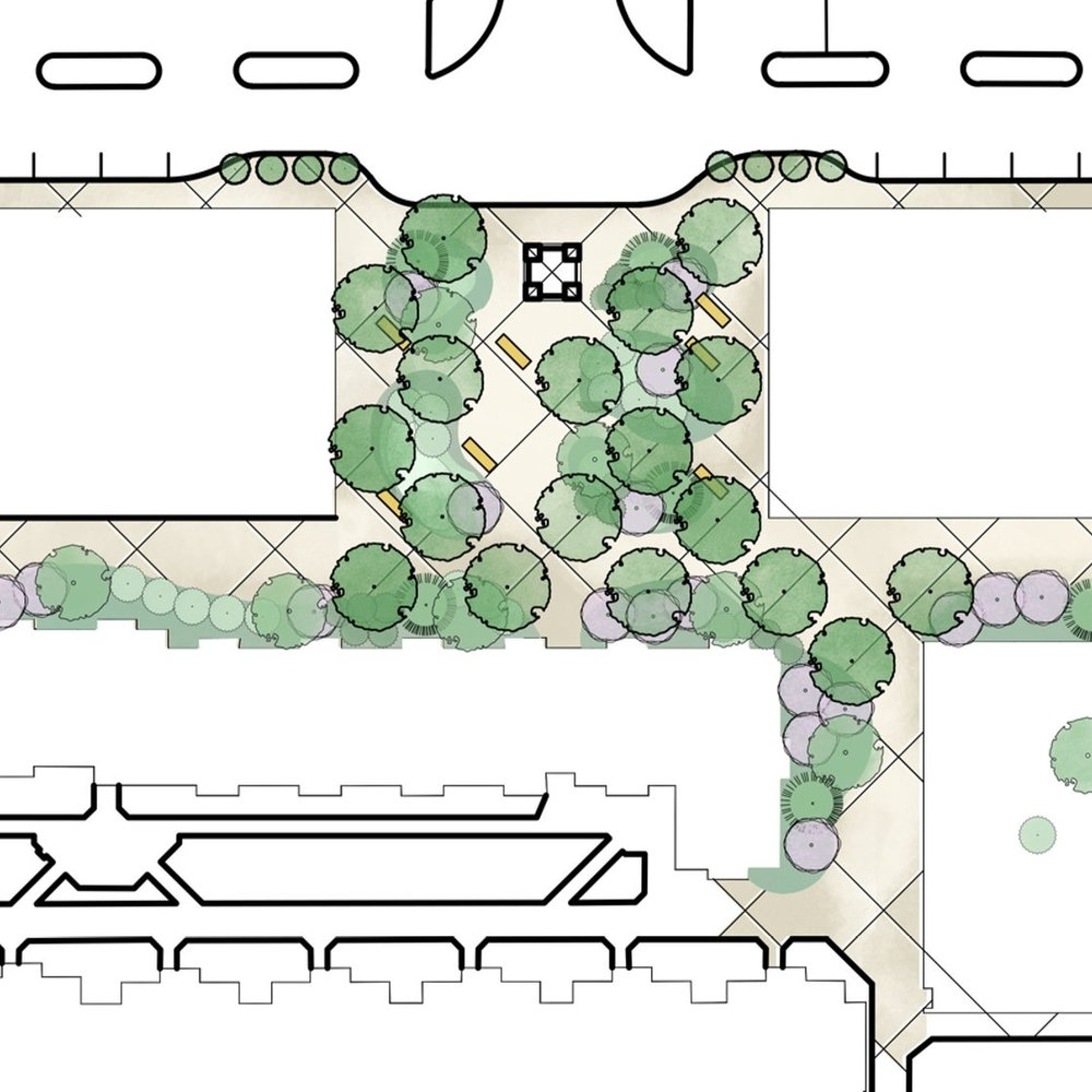 University Plaza |   Landscape Architecture