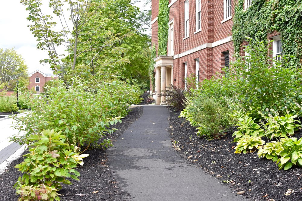 SUNY-Cortland-Graham-Ave-Bowers-Hall-Walkway-2017_ - 8.jpg