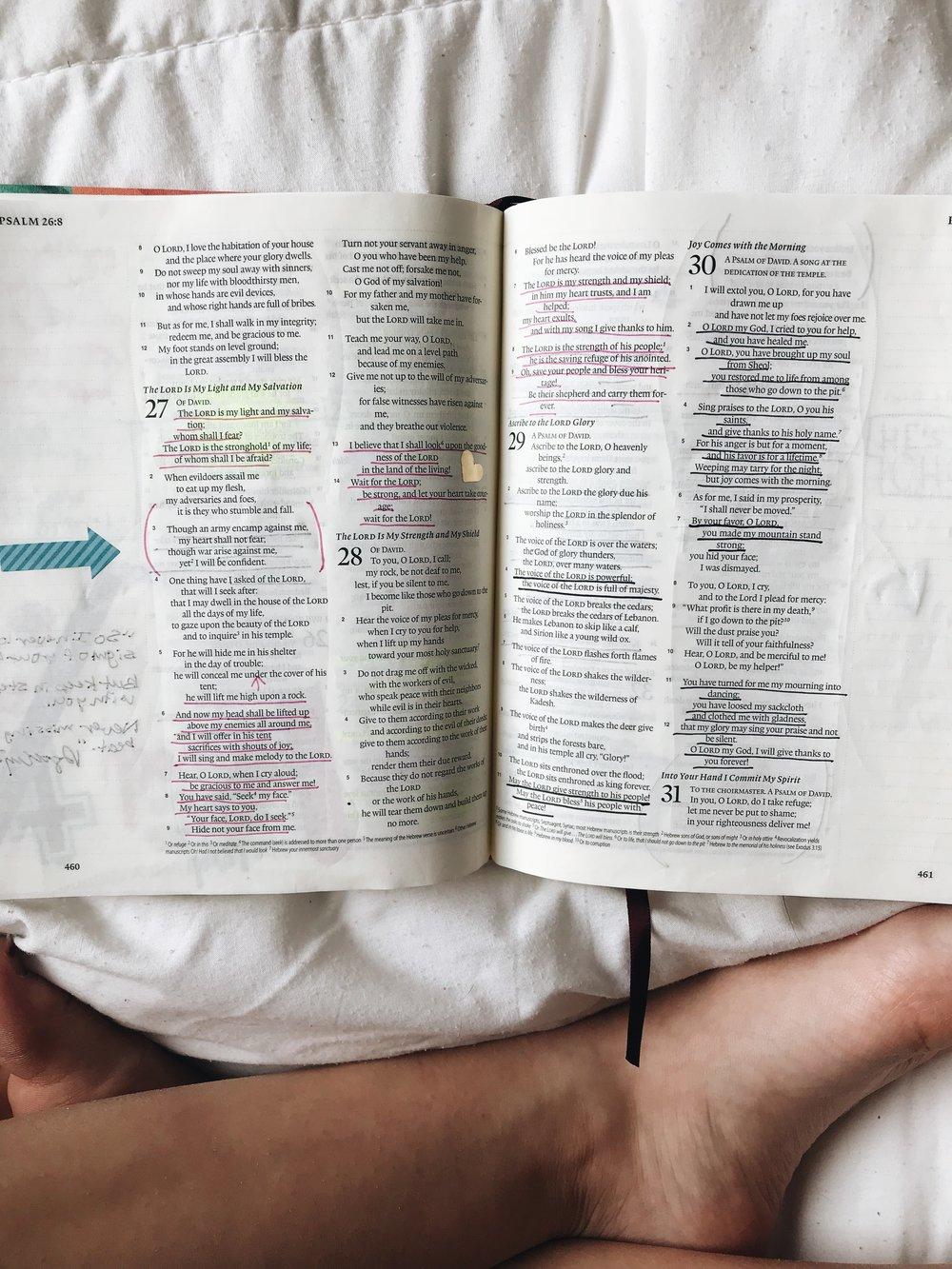 Bible 13.jpg