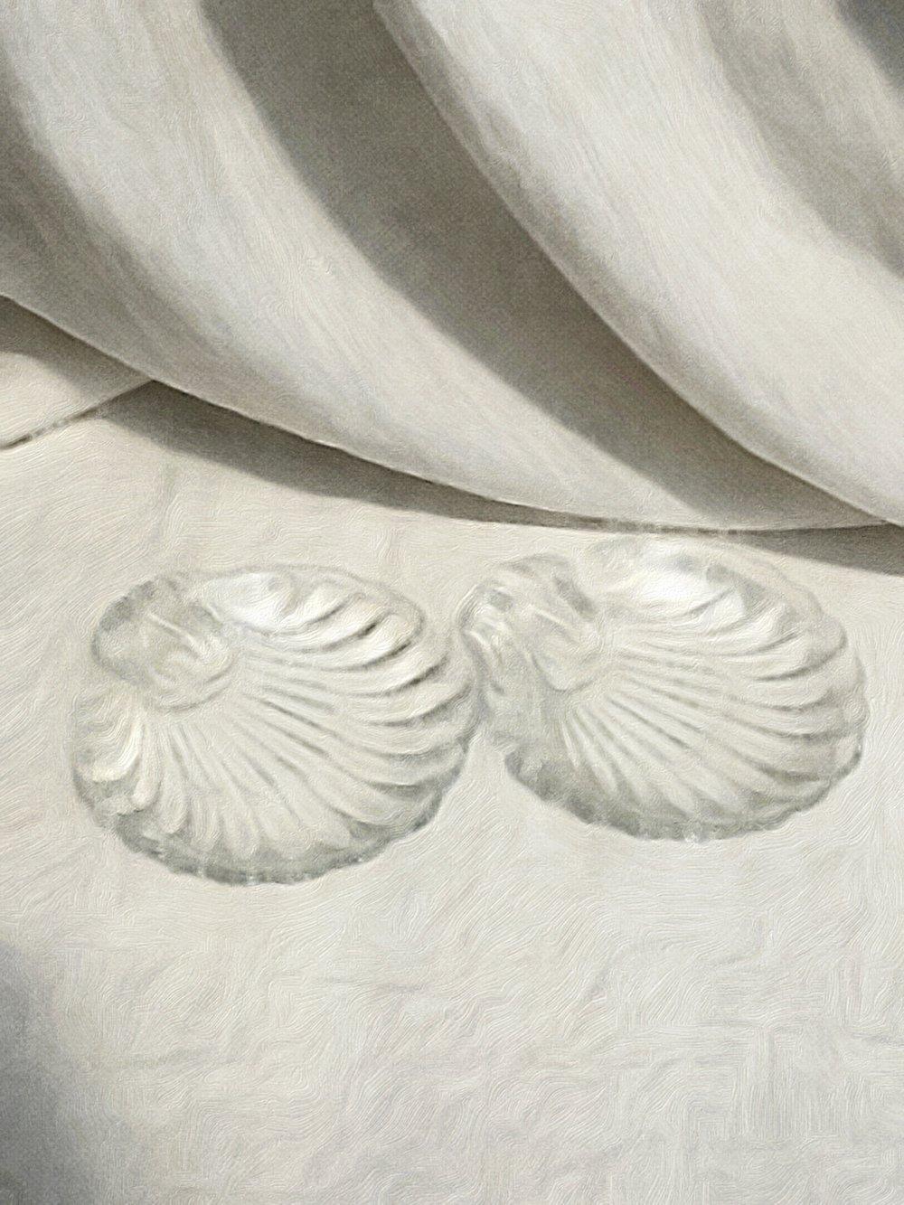 Glass shell dish