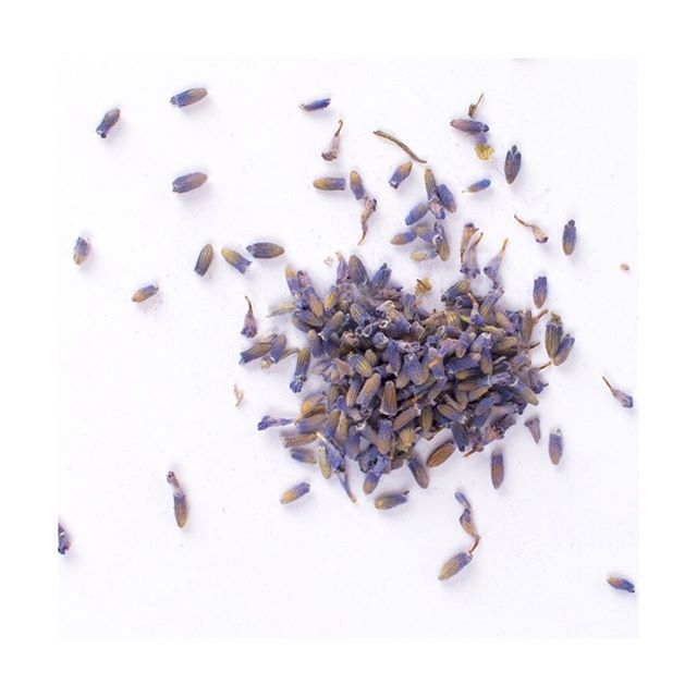 💟lavender relieves stress. stress is one of the top causes of skin irritations and flare-ups 💟 #takecare #tendertouch #lovetrumpshate #lavender #beautyiswellness