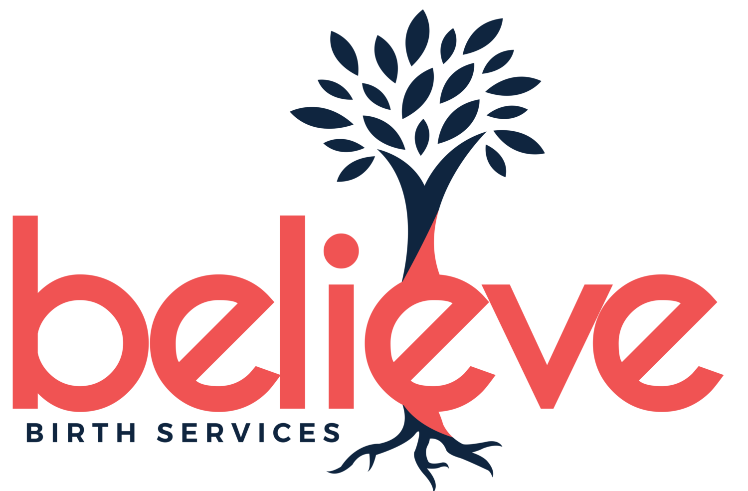 Believe Birth Services