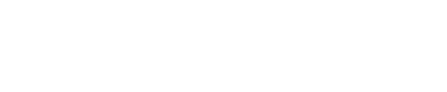 Third Palm Capital